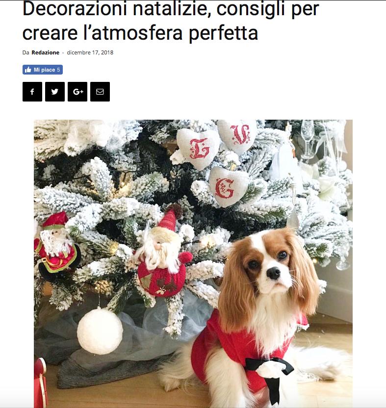 Viviana Grunert su L'OPINIONISTA-17.12.2018