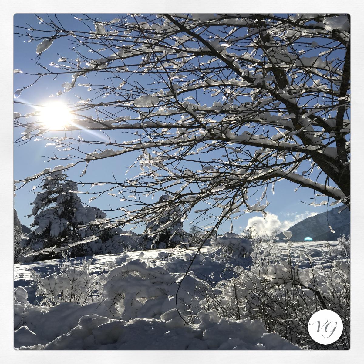 la neve del Trentino per Vacanze di Natale